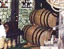 Виноделие в Молдове